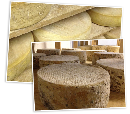 fromages fermiers.png